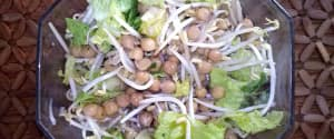 Knackiger Kichererbsen Sprossen Salat