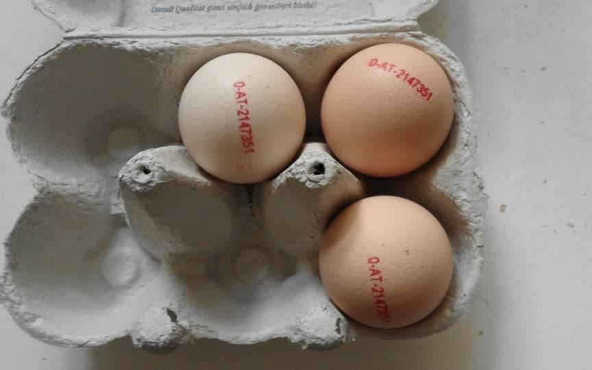 Eier Gesundheit
