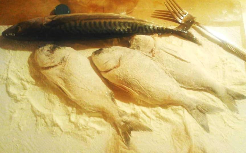 Fisch Konsum