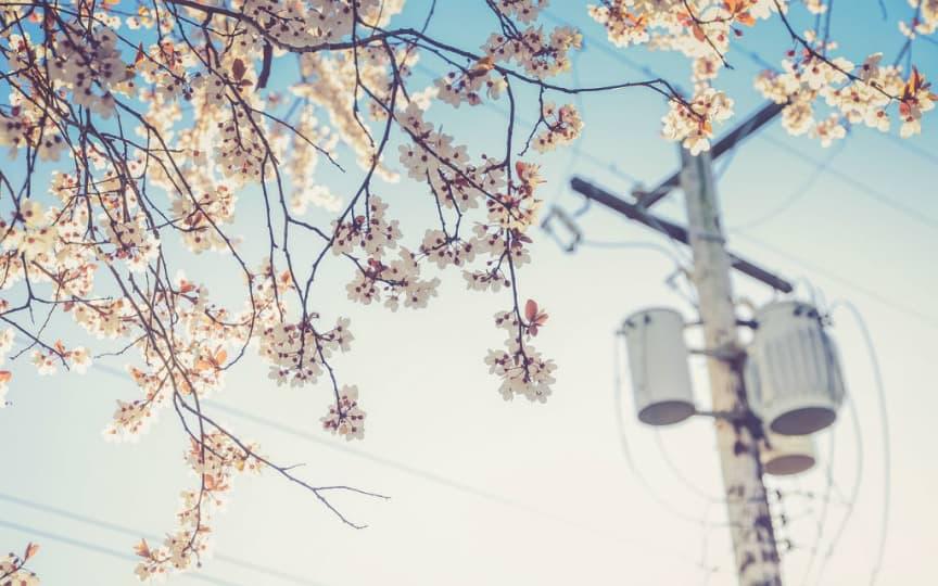 der Umwelt zuliebe Strom sparen