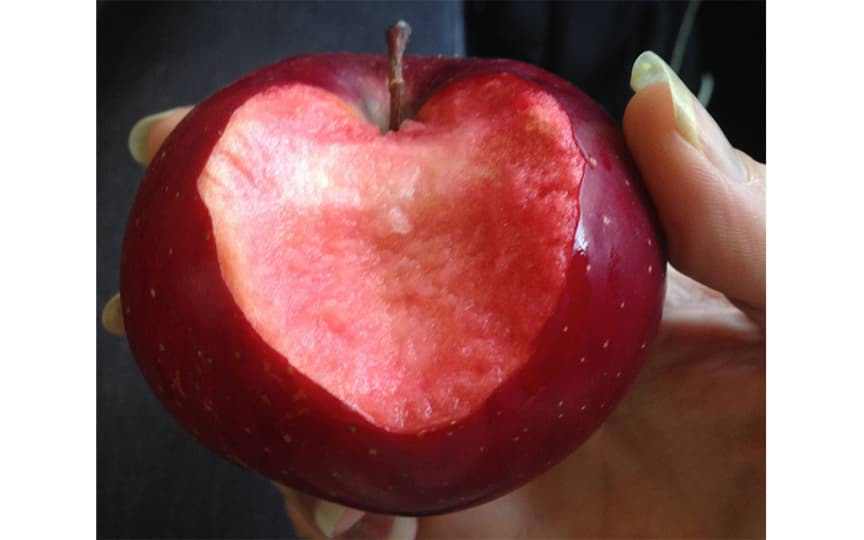 Herz Gesundheit