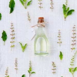 5 heilende praktische eigenschaften von lavendel veganblatt. Black Bedroom Furniture Sets. Home Design Ideas