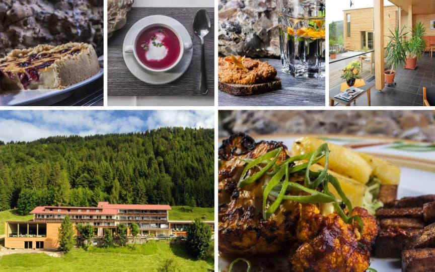kochkurs-berghotel-ifenblick