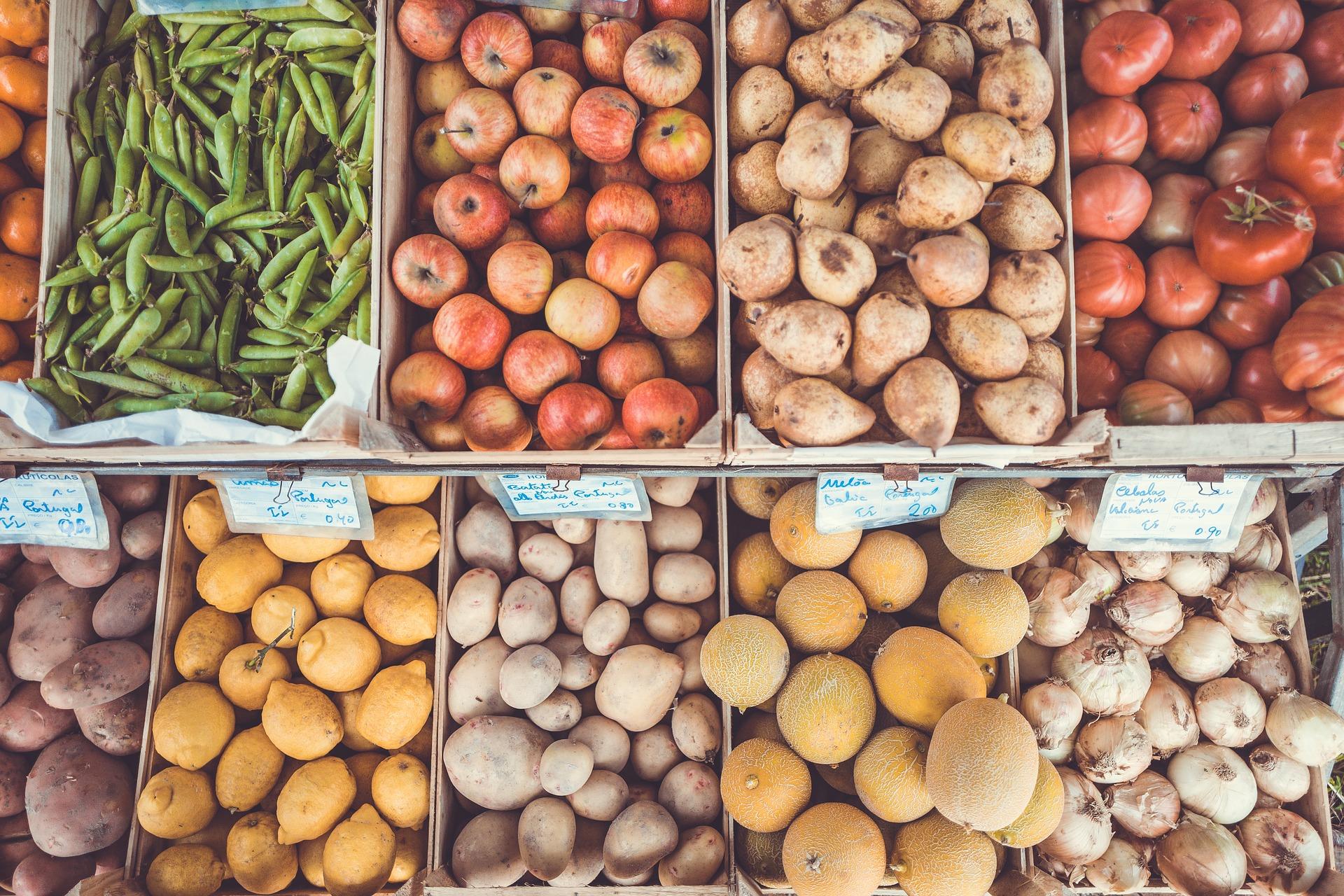Lebensmittel Richtigen Lagern: So Wird Nichts Mehr Schlecht!   VeganBlatt
