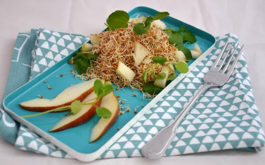 Braunhirse Salat