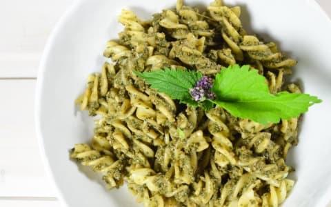Brennnessel Pesto
