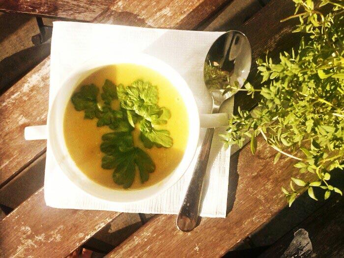 Kürbis-linsen-kokos Suppe