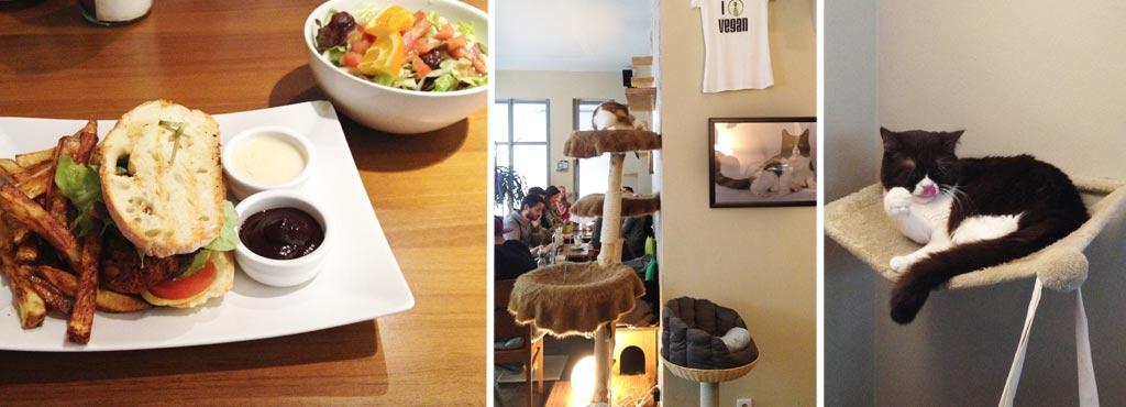 Vegan In Munchen Restaurants Und Shops Veganblatt