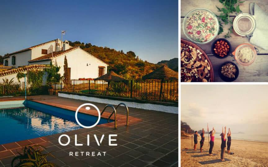 Body Mind Detox Olive Retreat Spain