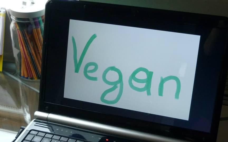 vegane Onlineshops