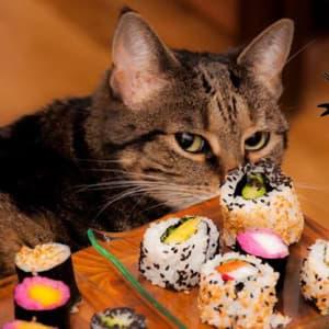 Pirata veganes Sushi