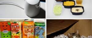 15 Dinge aus Plastik, die Du wirklich meiden solltest