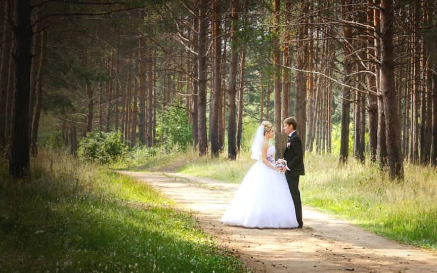 vegan und grün heiraten