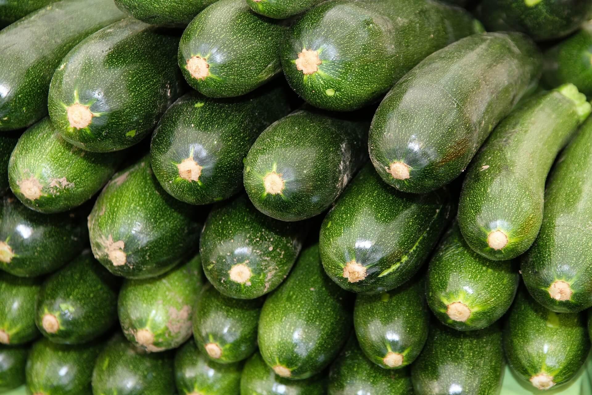 Zucchinivergiftung Durch Cucurbitacin Symptome Ursachen Hilfe